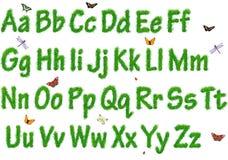 O alfabeto de uma grama Imagens de Stock Royalty Free
