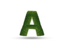 O alfabeto inglês das folhas da árvore Foto de Stock Royalty Free