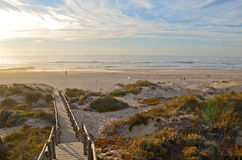 O Algarve: Escadas para encalhar o Praia Monte Clerigo perto de Aljezur, Costa Vicentina, Portugal fotografia de stock royalty free