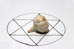 O alho branco pôs um centro de seis talismãs do sentido nos círculos fotografia de stock royalty free
