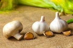 O alho e o close-up dos cogumelos encontram-se na serapilheira fotos de stock royalty free