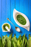 O alho selvagem sae com a sopa do almofariz, da colher e do alho na placa branca no fundo de madeira azul, estilo de vida saudáve Fotos de Stock
