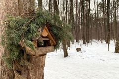 O alimentador do pássaro no pinheiro no inverno fotografia de stock