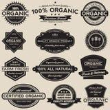 O alimento biológico etiqueta o grupo da coleção do vetor Foto de Stock