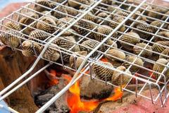 O alimento queimado berbigão denomina Tailândia Imagem de Stock
