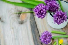 O Allium floresce o ramalhete em um vaso decorativo do metal à moda Profundidade de campo rasa Fotografia de Stock Royalty Free