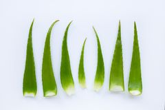 O aloés vera é uma planta medicinal popular para a saúde e a beleza, sobre sobre branco fotografia de stock