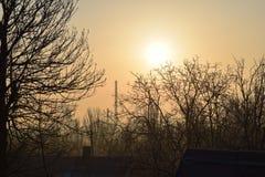 O alvorecer o sol as árvores Fotos de Stock Royalty Free