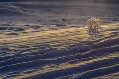 O amanhecer Foto de Stock Royalty Free