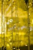 O amarelo conduziu luzes Foto de Stock