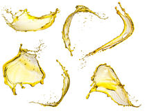 O amarelo de voo espirra a coleção Imagem de Stock