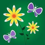 O amarelo floresce borboletas roxas Ilustração Stock