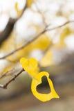 O amarelo folheia coração dado fôrma Imagem de Stock