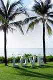 O amor da palavra soletrou para fora em uma praia entre palmeiras Imagem de Stock
