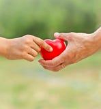O amor de mãe na mão, na palma foto de stock royalty free