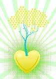 O amor está crescendo Imagem de Stock