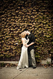 O amor está no ar Fotografia de Stock Royalty Free