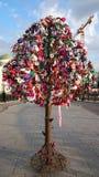 O amor trava a árvore Foto de Stock Royalty Free