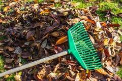 O ancinho nas folhas e na grama da pilha imagem de stock