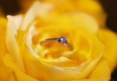O anel de Diamant sobre o amarelo levantou-se Fotografia de Stock Royalty Free