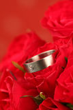 O anel de noivado Titanium em levantou-se Fotos de Stock