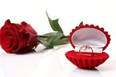 O anel de ouro e levantou-se Imagem de Stock Royalty Free
