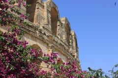 O anfiteatro romano em Tunísia Fotografia de Stock