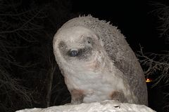 O animal do gelo no parque da cidade em Luleå Imagem de Stock Royalty Free