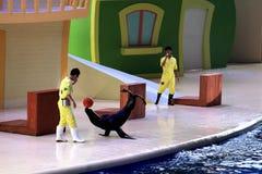 O animal selvagem e os peixes no aquário foto de stock royalty free