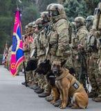 25o aniversário do serviço de segurança de Ucrânia Foto de Stock