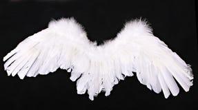 O anjo do Cupid voa o suporte da fotografia Fotografia de Stock Royalty Free
