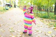 O 1 ano bonitos da menina joga com as folhas no outono fora Fotografia de Stock
