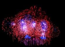 o ano novo dos fogos-de-artifício comemora - o isolador colorido bonito do fogo de artifício Imagens de Stock Royalty Free