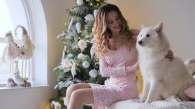 O ano novo, menina bonita no vestido e com penteado abraça o animal de estimação macio no sofá na manhã na janela do fundo e boni filme
