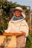 O apicultor do rapaz pequeno trabalha em um apiário na colmeia foto de stock