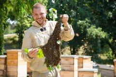 O apicultor no trabalho pela abelha de madeira acumula Fazendeiro novo em sua exploração agrícola Imagens de Stock Royalty Free