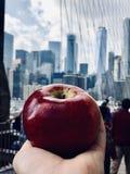 O Apple grande foto de stock royalty free