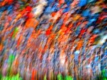 O arco-íris brilhante corajoso colore fundos Imagens de Stock Royalty Free