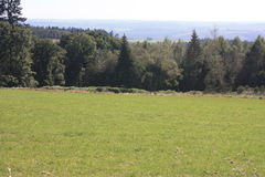 O Ardenne no lugar La Roche em Bélgica Foto de Stock Royalty Free