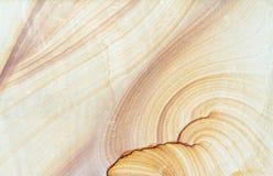 O arenito modelou (o fundo da textura dos testes padrões naturais) Foto de Stock