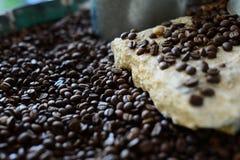 O aromático de feijões de café Roasted com fundo borrado imagens de stock royalty free