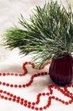 O arranjo do Natal com um vaso e um pinho vermelhos ramifica Foto de Stock