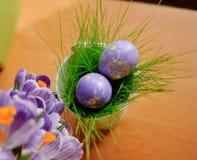 Flores e ovos da páscoa foto de stock