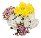 O arranjo floral com as flores amarelas, brancas e roxas do crisântemo, fim acima, isolou o fundo branco Imagem de Stock
