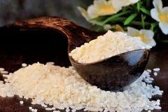 O arroz é uns produtos alimentares populares no cozimento, grãos do arroz O arroz é uma planta herbácea, colheita do cereal, cere fotografia de stock