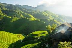 O arroz coloca em terraced de Longji, Guilin, China Imagem de Stock