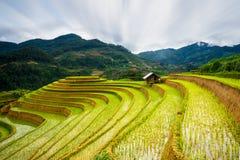 O arroz coloca em terraced no por do sol em MU Cang Chai, Yen Bai, Vietname Foto de Stock