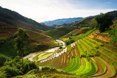 O arroz coloca em terraced no por do sol em MU Cang Chai, Yen Bai, Vietname Imagem de Stock