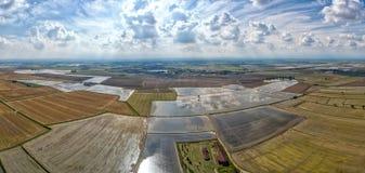 O arroz cultivou campos na opinião aérea de Italia fotografia de stock royalty free