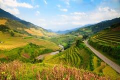 O arroz dos terraços coloca na montanha no noroeste de Vietname Fotografia de Stock